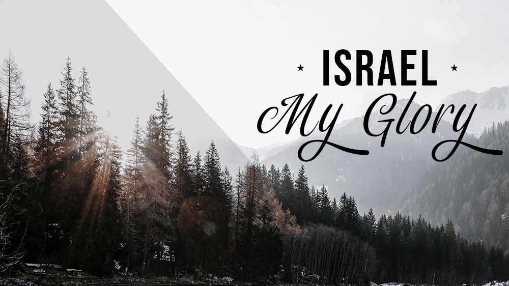 Israel My Glory