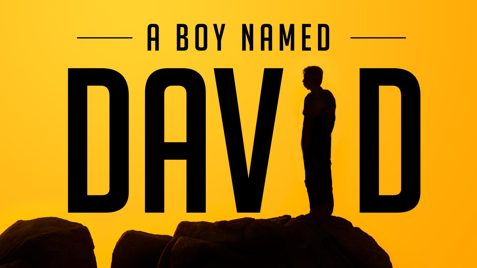 A Boy Named David